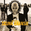 All I Want/Skunk Anansie