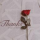 Thanks/Jo Sung Mo