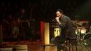 Fühlt sich wie fliegen an (MTV Unplugged 2013)/Max Herre