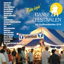 Dansefestivalen Sel, Gudbrandsdalen 2014 - Råte løyle'/Various Artists
