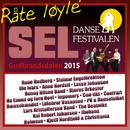 Dansefestivalen Sel, Gudbrandsdalen 2015 - Råte løyle'/Various Artists