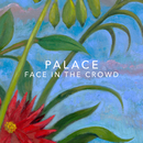 Face In the Crowd/Palace