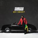 Wah Gwaan?!/Shaggy