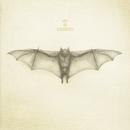 White Bat/He Is Legend