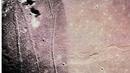 Capsule/Brian Eno