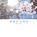 未来のつぼみ/HaiRi