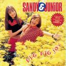 Dig - Dig - Joy/Sandy & Junior