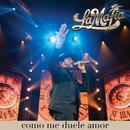 Como Me Duele Amor (En Vivo)/La Mafia