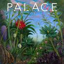 Life After/Palace