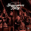 The Escapologist (Swedish Version)/Sugarplum Fairy