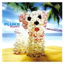 Puppy/Fluke