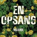 En Opsang/Wafande