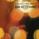 Follow You Down/Gin Blossoms