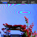 Inflorescent/Friendly Fires