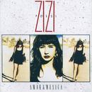 Amor & Música/Zizi Possi