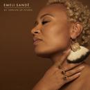 My Version Of Events/Emeli Sandé