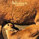 Balbutiements/Louis Chedid