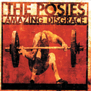 Amazing Disgrace/The Posies