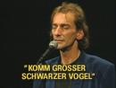 Komm großer schwarzer Vogel (Live)/Ludwig Hirsch