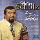 Seine großen Erfolge/Walter Scholz