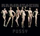 PUSSY (INT'L)/Rammstein