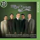 Íconos 25 Éxitos/Grupo Bryndis