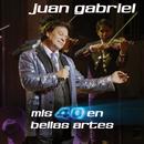 Mis 40 En Bellas Artes (En Vivo Desde Bellas Artes, México/ 2013)/Juan Gabriel