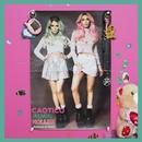 Holler (Caotico Remix)/Rebecca & Fiona