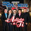 Adicto A Ti/Grupo Bryndis