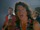 Anything Is Possible/ICEHOUSE
