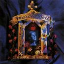 Blue House/Marcia Ball