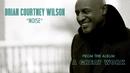 Noise (Audio)/Brian Courtney Wilson