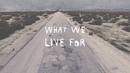 What We Live For (Lyric Video)/American Authors