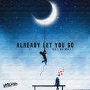Already Let You Go (feat. Anthony E)/Vigiland