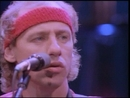 Walk Of Life (Video)/Dire Straits