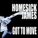 Got To Move/Homesick James
