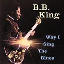 Why I Sing The Blues/B.B. King