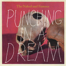 Punching In A Dream/The Naked And Famous