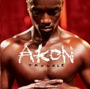 Trouble/Akon