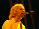 Stay Away (1992/Live at Reading)/Nirvana