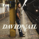 I'm About To Come Alive (Exclusive to Echospin)/David Nail