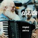 Forró E Frevo/Sivuca