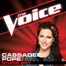 Stupid Boy (The Voice Performance)/Cassadee Pope