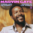 Where Are We Going? / Woman Of The World/Marvin Gaye & SNBRN