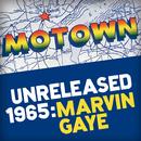 Motown Unreleased 1965: Marvin Gaye/Marvin Gaye & SNBRN
