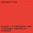 Baby Forgive Me (Young Marco Remix)/Robyn