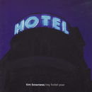 My Hotel Year/Tim Bowness