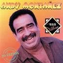 Oro Salsero (20 Éxitos)/Andy Montañez