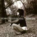 Dreaming Through The Noise/Vienna Teng