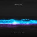 Flotsam And Jetsam/Peter Gabriel